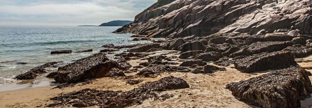 San Beach Acadia National Park Maine